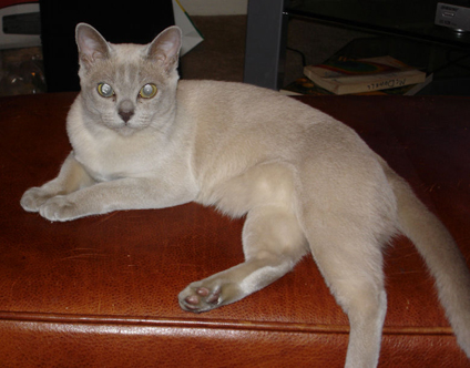 Glamour pose of Grace on ottoman